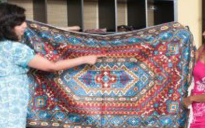 I Bought A Viscose Rug, Now What??